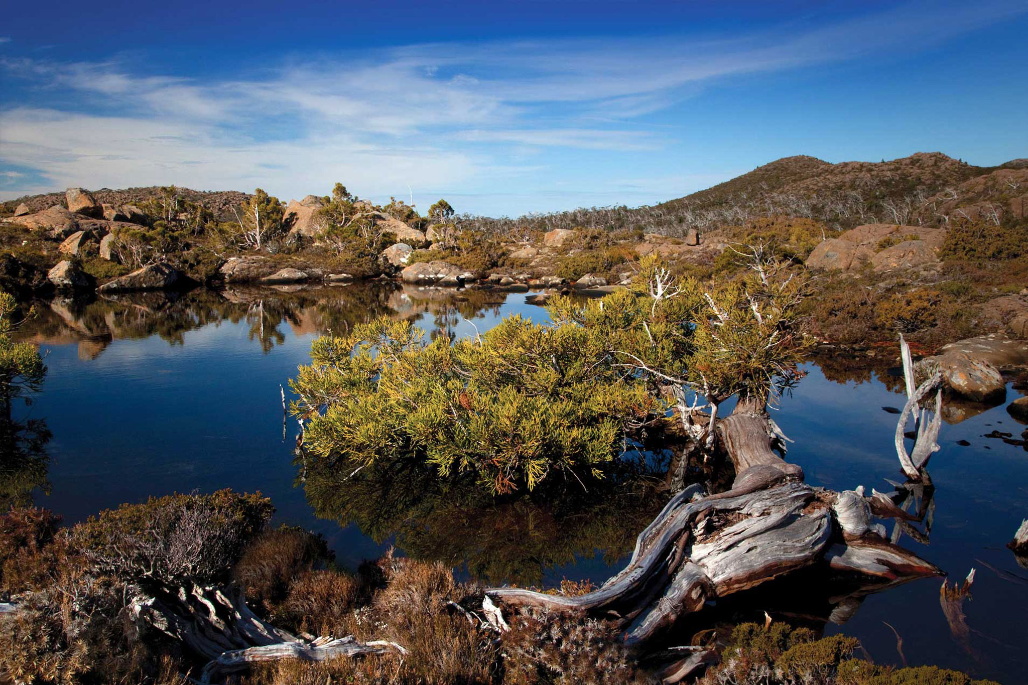 Mount Field National Park Tarn or Glacial Lake